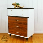 Theodore 2 drawer front